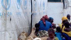 Angola acolhe 56 mil refugiados